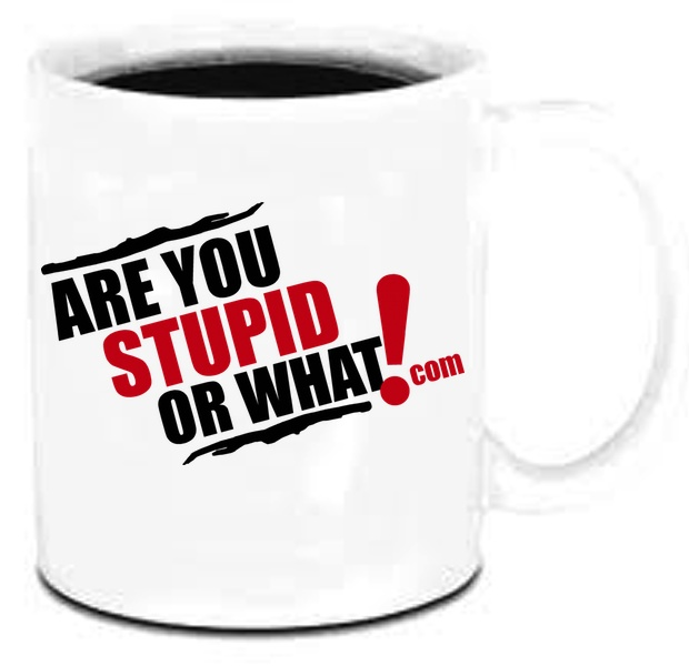 Are You Stupid Or What Coffee Mug