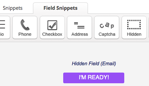 Infusionsoft Hidden Snippet For Web Form