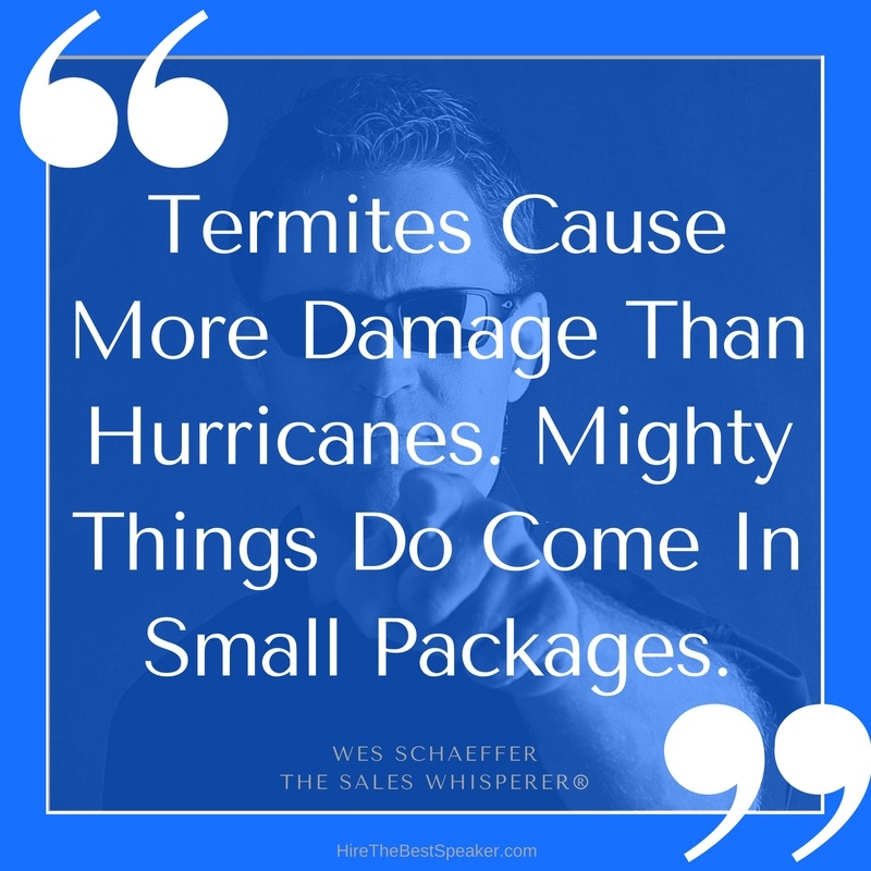 Termites_Cause_More_Damage_Than_Hurricanes._Mighty_Things_Do_Come_In_Small_Packages.