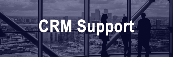 Services_-_CRM_Support.png
