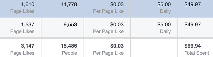 Facebook Fan Page Results Three Cents.png