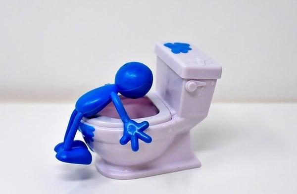 toilet-puke-thanksgiving-visitor