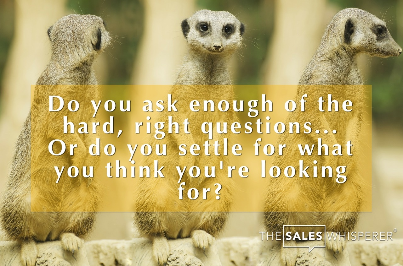 Q&A For Santa Rosa Academy High School #3