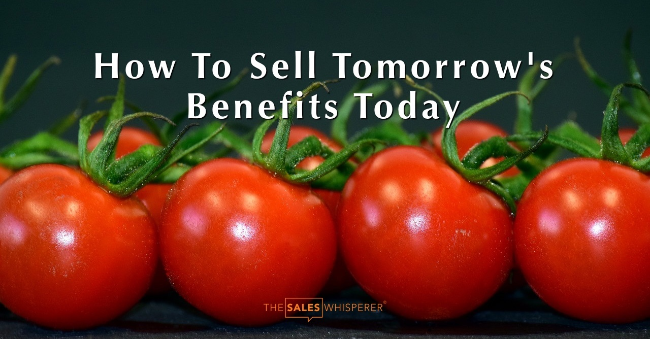 tomatoes_tomorrow_today_wes_schaeffer